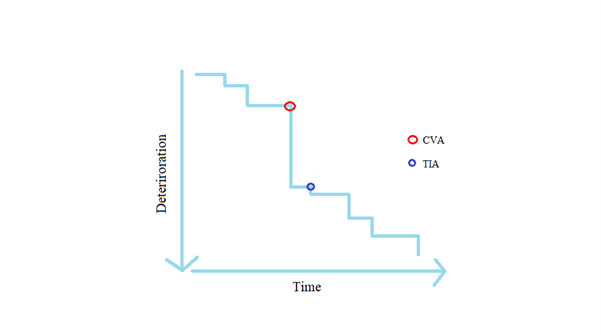 Line graph showing deterioration over time with Vascular dementia as a more stepped-process